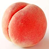 福島の桃 さくら白桃詳細