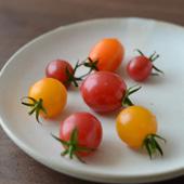 有機栽培ミニトマト【ギフト】(季節商品)詳細
